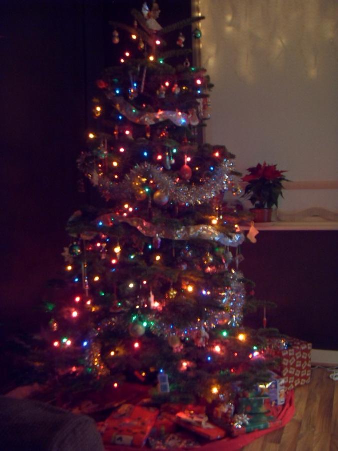 Kellys' First Christmas Tree
