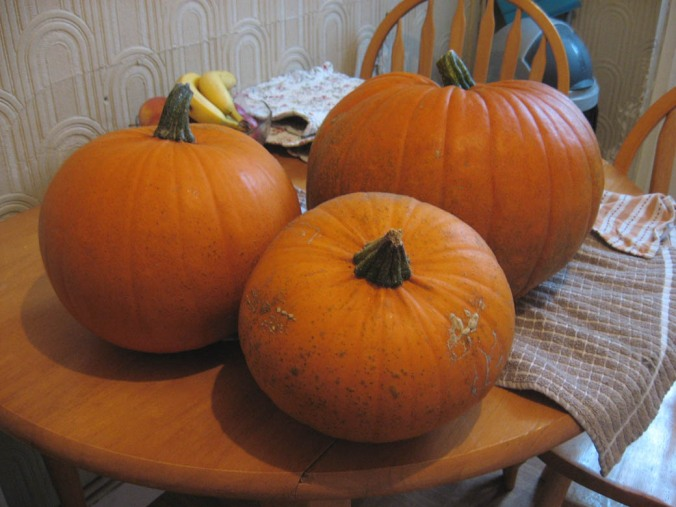 Garden Fresh Pumpkins