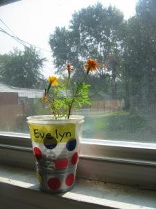 Evey's Flowers