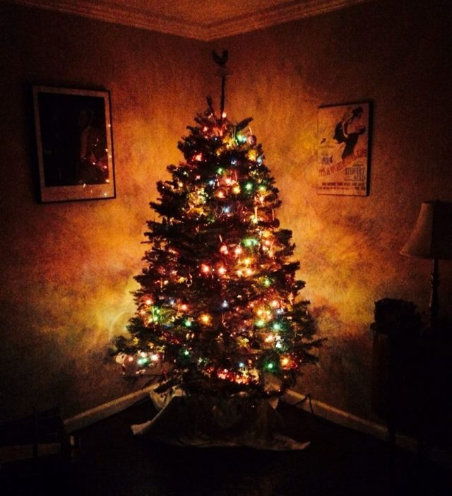 """Tree"" by Frank Kelly"